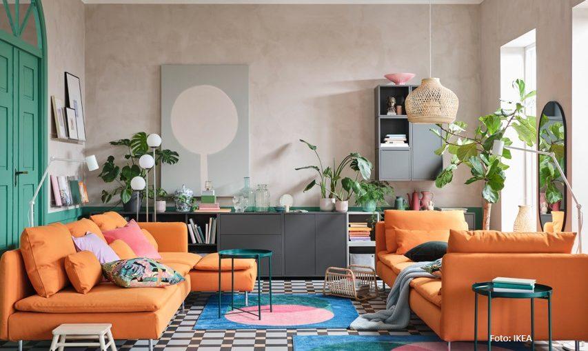 5 cara menata tanaman hias di rumah