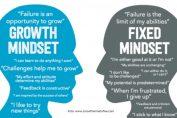 Fixed Mindset atau Growth Mindset, Kamu Tipe yang Mana?